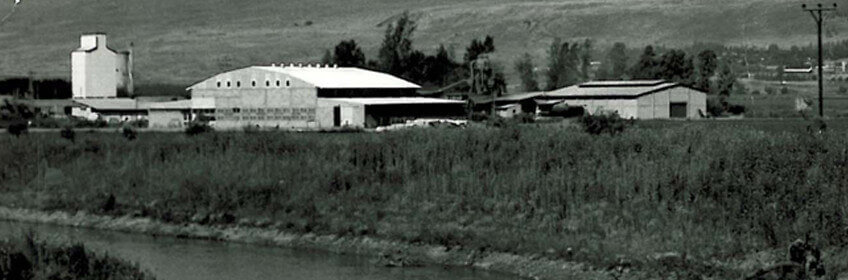The Huliot factory at Kibbutz Sde Nehemia