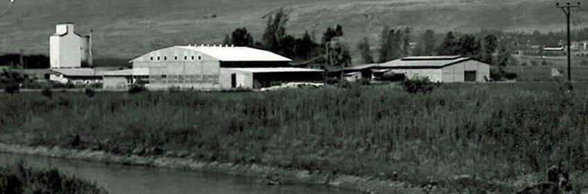 The Huliot factory at Kibbutz Sde Nehemia